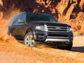 2016 Ford Expedition Dust