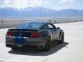 2016 Mustang Shelby GT350R Blue stripes rear